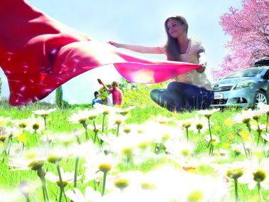 Frühjahrs-Check